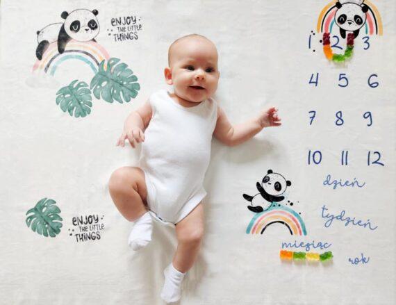 FotoMata Panda - tło do zdjęć